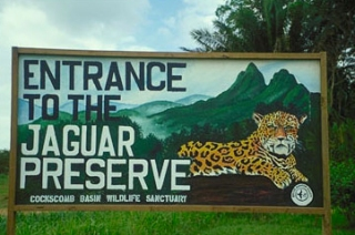 Cockscomb-Basin-Sanctuary-and-Jaguar-Preserve-in-Belize