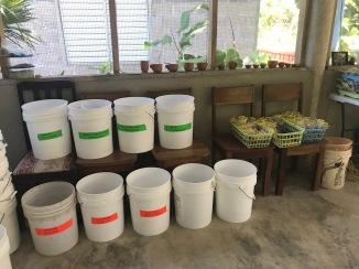 Artifact buckets